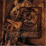 Onset of Putrefaction by Necrophagist (2004-05-03)
