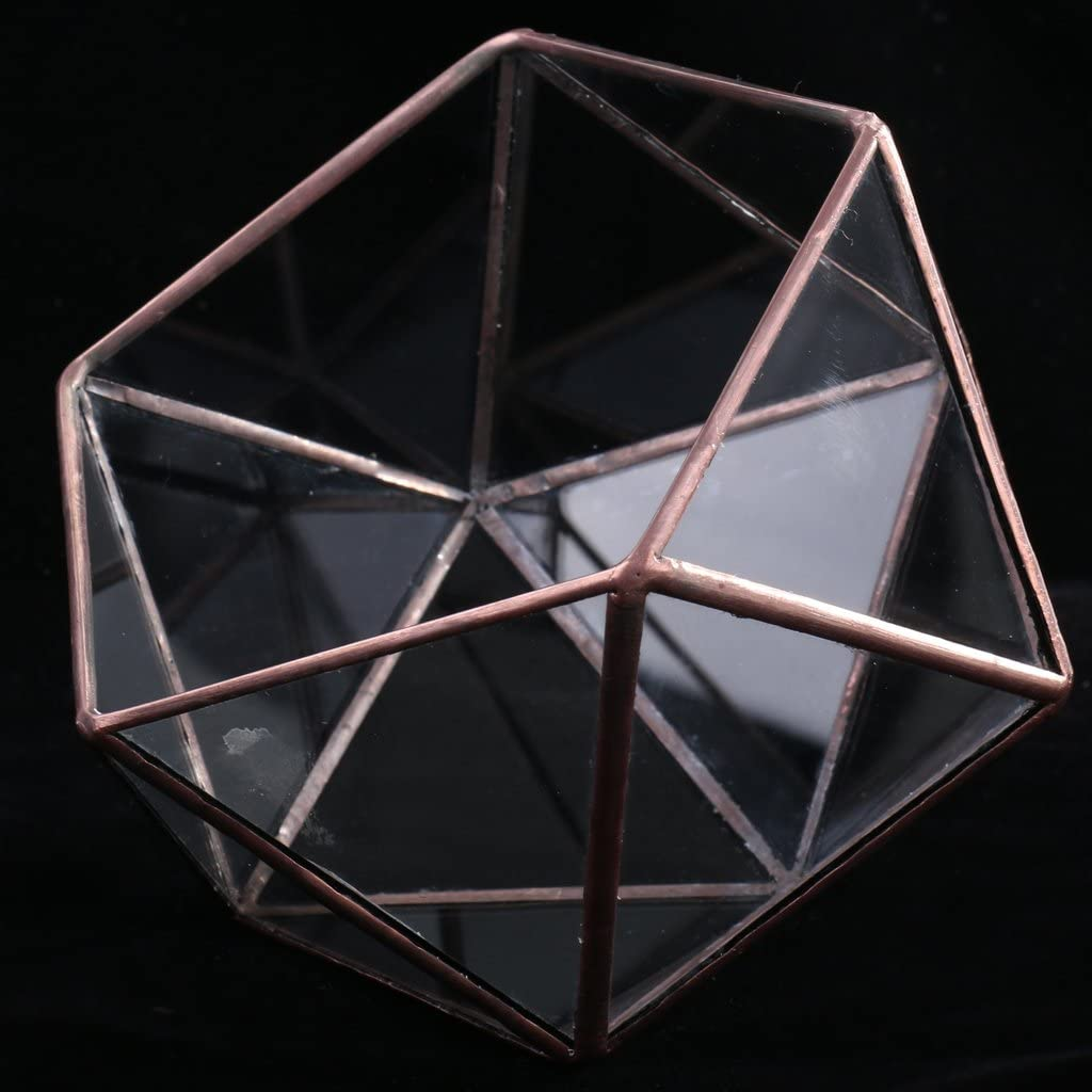 12 x 12 x 12 cm B Blesiya Caja De Terrario Geom/étrico De Vidrio Transparente Maceta Suculenta Maceta Decoraci/ón De Fiesta En Casa Negro