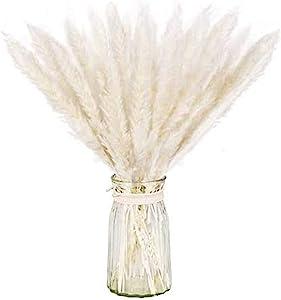 Dry Pampas Grass Natural Dried Bundle for Home Decor 20pcs(White)