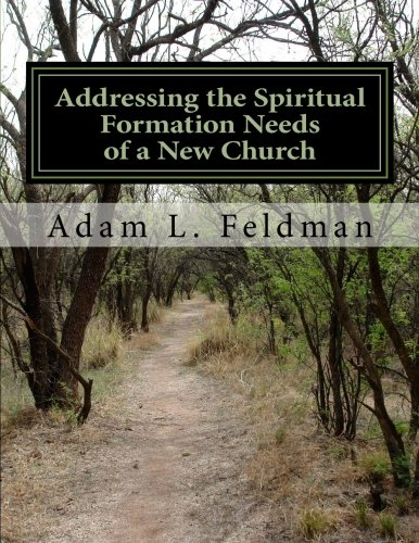 Addressing the Spiritual Formation Needs of a New Church: Current Realities, Future Opportunities and Formative Curriculum ebook
