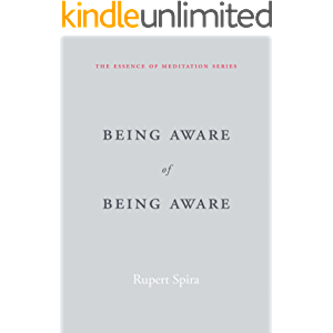 Being Aware of Being Aware (The Essence of Meditation Series)