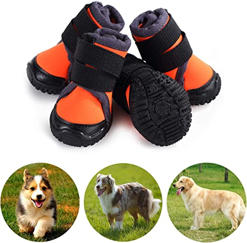 Petilleur--Hundeschuhe-Pfotenschutz