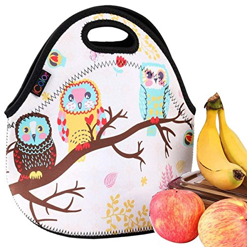 iColor Cute Owls Neoprene Insulated Waterproof Cooler Box Container Soft Case baby lunchbox Handbag Work Travel Outdoor Thermal Lunch Tote Bag School/Office Storage Pouch