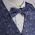 EGE1B04B-L Purple Blue Young Gentlemen Paisley Microfiber Vest and Pre-tied Bow Tie Elegant Accessories By Epoint