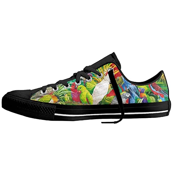 3c1c2c20067 George Oy Plimsoll Canvas Sneakers Colorful Parrots Casual Low-Cut Lace up  Flat Trainers Shoes for Men Women  Amazon.co.uk  Clothing