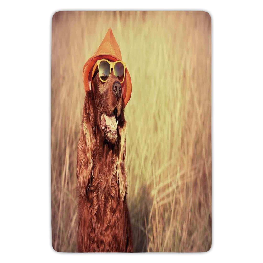 Bathroom Bath Rug Kitchen Floor Mat Carpet,Animal Decor,Funny Retro Irish Setter Dog Wearing Hat and Sunglasses Humor Joy Picture,Redbrown Tan,Flannel Microfiber Non-slip Soft Absorbent