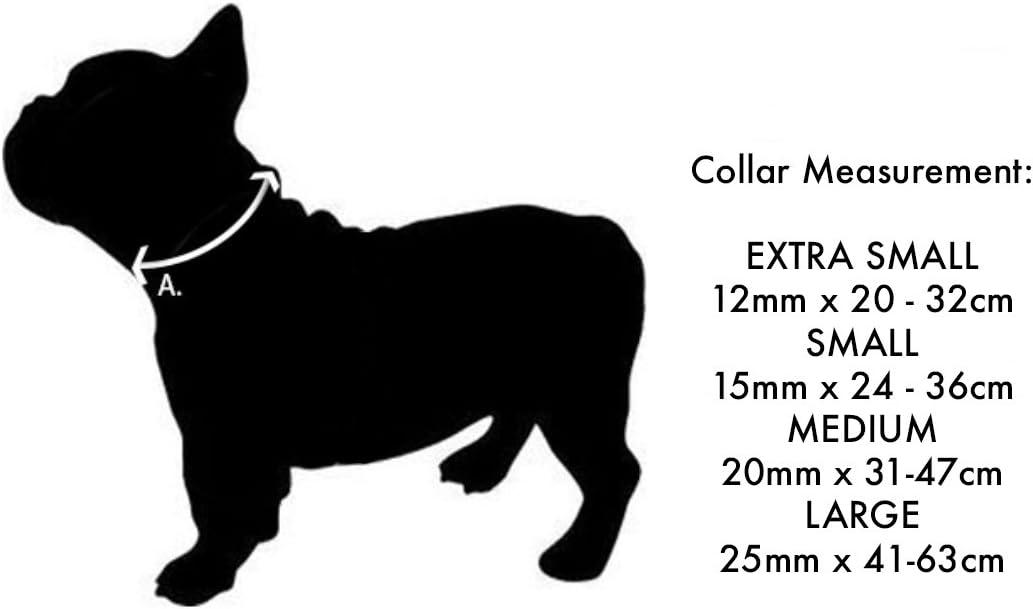 Azul Collar Perro Red Dingo Plain talla del fabricante: S Dark Blue