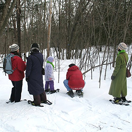 Gatineau Park, Quebec Canada: Audio Journeys Exploring Winter in Quebec on Snowshoes ()