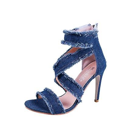 f36710b7372a0 Amazon.com: Women Fashion Solid Denim Fine Heel Pointed Toe Zipper ...
