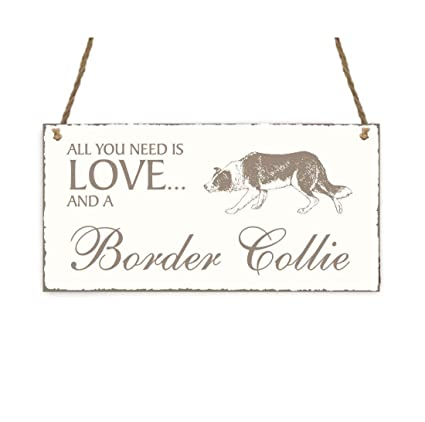 Placa decorativa, « All You Need is Love And A Border Collie ...