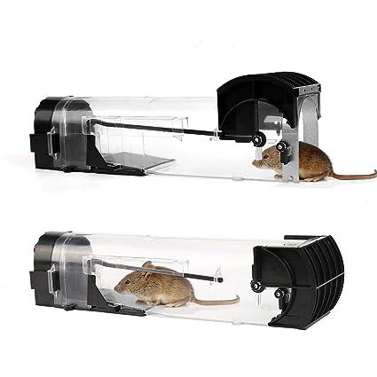 Mitening 2 Stück Mausefalle Lebend, Lebendfallen Mäuse Tierfreundliche Transparente Wiederverwendbare Rattenfalle Nagetierfalle mit Lockstoff