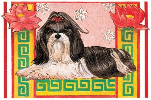 Price comparison product image Pipsqueak Productions C920 Holiday Boxed Cards- Shih Tzu - Black and White