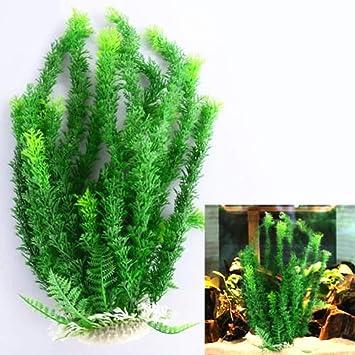 nouler Acuario Pecera Ornamento Planta Artificial Plástico Agua Hierba Regalo Casa,Verde,Una Talla: Amazon.es: Deportes y aire libre