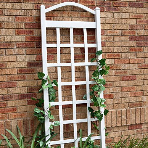 (Dura-Trel 11172 Cambridge Trellis, White)