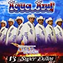 Agua Azul - 13 Super Exitos 2 [Audio CD]<br>$463.00