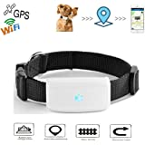 TKSTAR Mini WiFi Pet GPS Tracker, The 2nd Generation Anti- lost Dog/Cat Finder Global GPS/GSM Sim 200h Long Standby, RealtimeTraining Activity Collar, Waterproof Free Tracking Platform & APP TK911