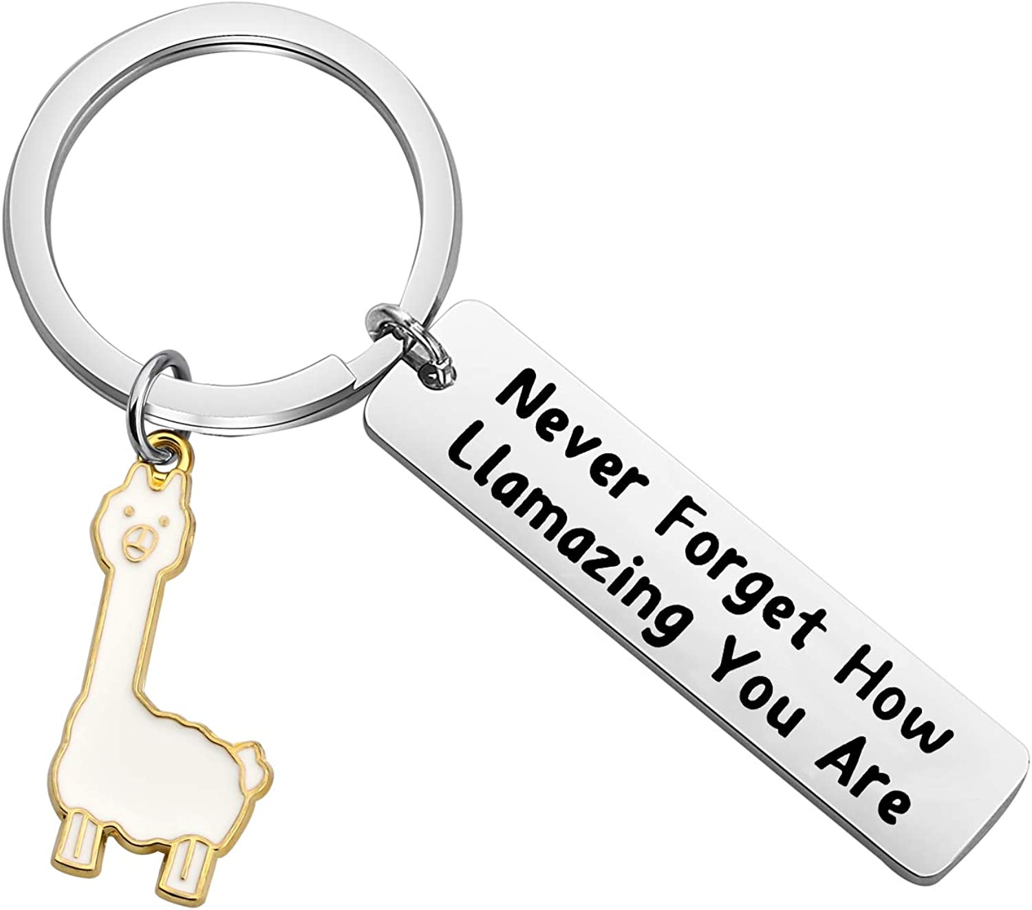 FOTAP Llama Gift Never Forget How Llamazing You are Keychain Be Llamazing Cute Alpaca for Women Alpaca Gifts Animal Lover Gift