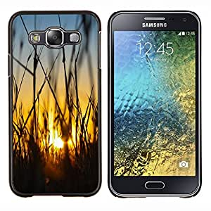 - field rye farming summer - - Modelo de la piel protectora de la cubierta del caso FOR Samsung Galaxy E5 E500 RetroCandy