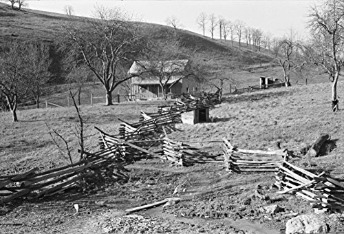 Virginia 1940 Nrail Fence And Farm Home Near Luray Virginia Photograph By Marion Post Wolcott 1940 Poster Print by (24 x ()