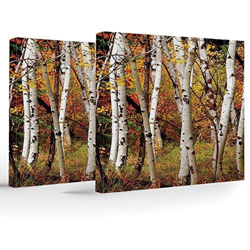 Artwork Wall Art Canvas Prints Picture,Fall Decor,2 Panels Stretched Canvas Framed Wall Art,White Fall Birch Trees Autumn Leaves Growth Wilderness Ecology Calm View Decorative