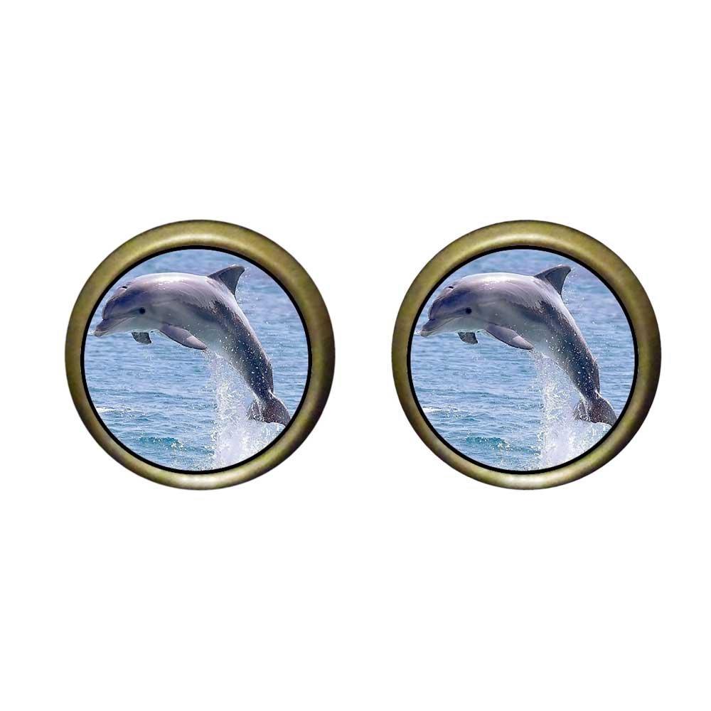 GiftJewelryShop Bronze Retro Style Cute Jump Dolphin Photo Stud Earrings 12mm Diameter
