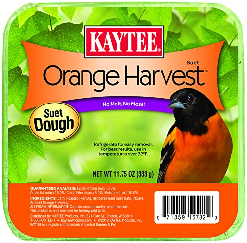 Kaytee Orange Harvest Wild Bird Suet, 11.75 oz (Orange Suet Dough)