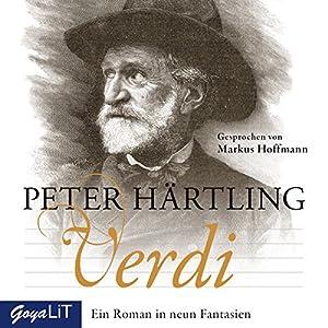 Verdi: Ein Roman in neun Fantasien Hörbuch