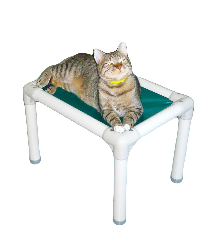 Amazon.com : Kuranda Almond PVC Chewproof Cat Bed -(21x15x14) - 40 ...