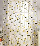 Best GoodGram® Curtains For Living Rooms - ASide BSide Casual Style Burnout Floral Printed Sheer Review