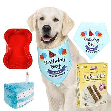 Amazon.com: Primo Lines suministros de fiesta de cumpleaños ...