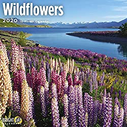 Image of the product 2020 Wildflowers Wall that is listed on the catalogue brand of Bright Day Calendars.