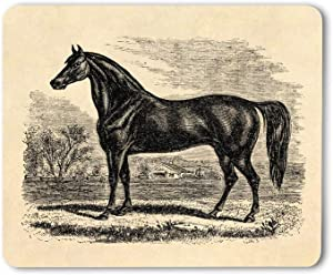 Moslion Horse Mouse Pad Vintage 1800S Horse Morgan Equestrian Sketch Gaming Mouse Mat Non-Slip Rubber Base Thick Mousepad for Laptop Computer PC 9.5x7.9 Inch