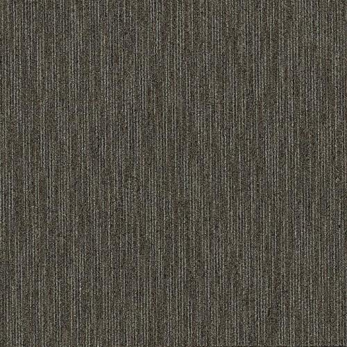 Shaw Skill Carpet Tile Aptitude 24