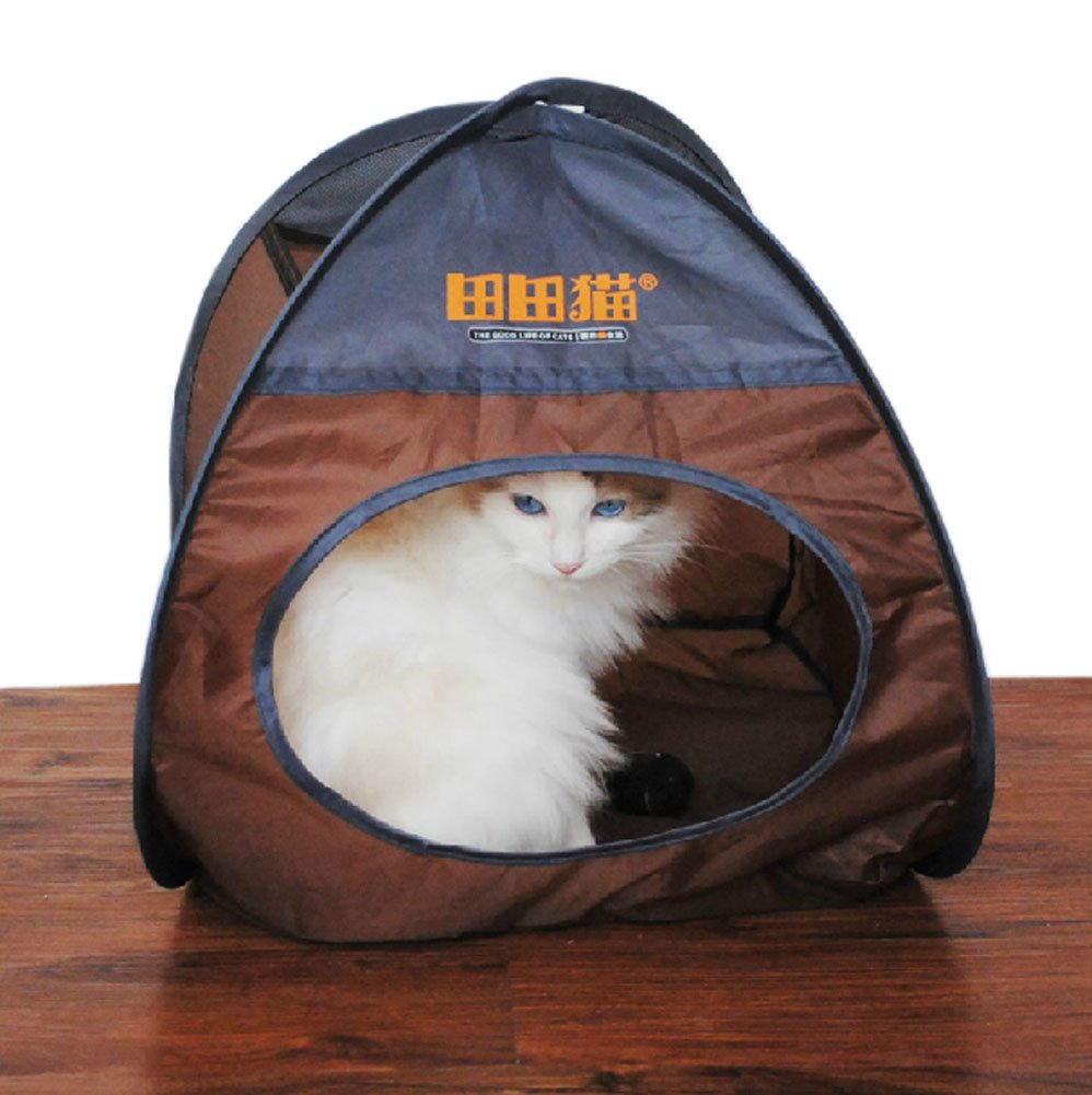Amazon.com  Polyester Folding Cat Tent / Cat House / Cat Bed COFFEE (SizeL40W27H37 CM)  Pet Supplies  sc 1 st  Amazon.com & Amazon.com : Polyester Folding Cat Tent / Cat House / Cat Bed ...