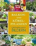 Balkon- und Kübelpflanzen: Gärtnern nach Bildern