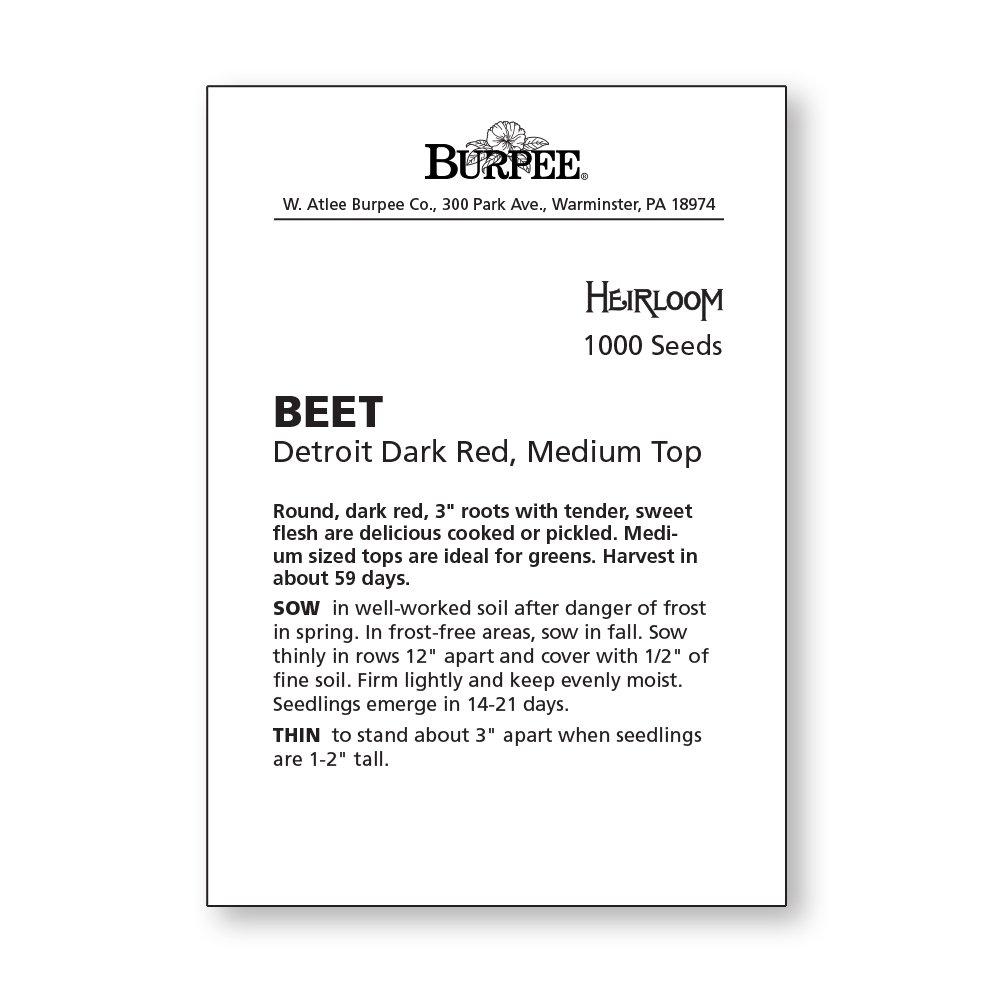 Burpee Detroit Dark Red Medium Top Beet Seeds 500 seeds