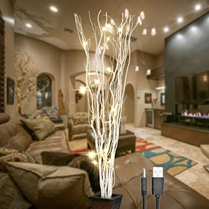 Amazon.com: Lightshare 36Inch 16LED Natural Willow Twig Lighted ...