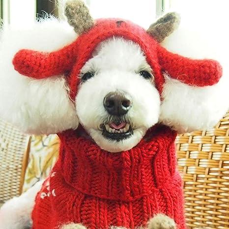 Fighrh Mascota tejida a mano Mascota Sombrero Chica Sombrero Gato ...