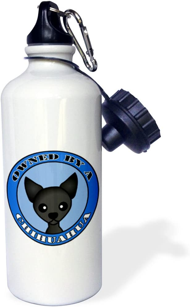 21 oz 3dRose wb/_47674/_1 Cute Cartoon Skunk Picking Flowers for His Date with a Sun Smiling Approval Sports Water Bottle Brown