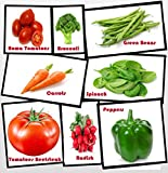 Heirloom Vegetable Seeds - NON Gmo- Easy to Grow - Variety of the Most Popular Vegetable Seeds in Zipper Mylar Bag-Vegetable Seeds for Planting-Garden Seeds