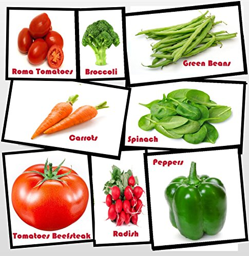 Heirloom Vegetable Seeds - Full Size Seed Packs-NON Gmo- Easy to Grow - Variety of the Most Popular Vegetable Seeds in Zipper Mylar Bag-Vegetable Seeds for Planting-Garden Seeds, Full Size Seed Packs ()