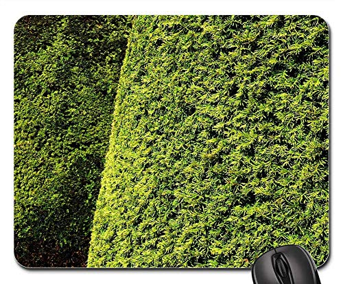 Mouse Pad - Hedge Topiary Yew Leaves Foliage Texture Green