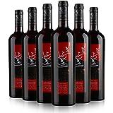 Viento del Sur 彩风赤霞珠红葡萄酒750ml*6瓶(智利进口红酒)
