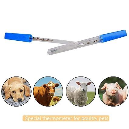 Pawaca Mercury Termómetro, Termómetro para Mascotas, Veterinario, Digital para Perros, Gatos y