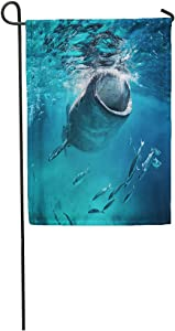 """Emvency Garden Flags 12"""" x 18"""" Blue Cebu Whale Shark Eating at The Fish Giant Mouth Open Diving Outdoor Decorative House Yard Flag Seasonal"""
