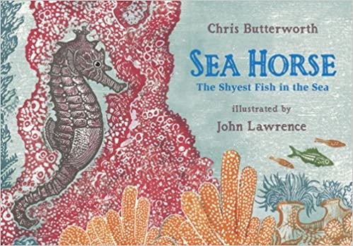 Image result for seahorse:shyest fish in the sea