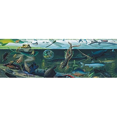 New York Puzzle Company - National Geographic Freshwater Ecosystem - 500 Piece Jigsaw Puzzle: Toys & Games