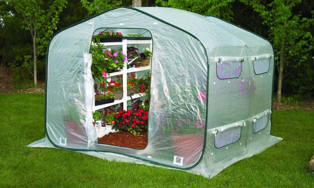 Amazon.com : Flower House FHDH500 DreamHouse Walk-In Greenhouse ...