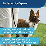 PetSafe Gentle Leader Head Collar with Training
