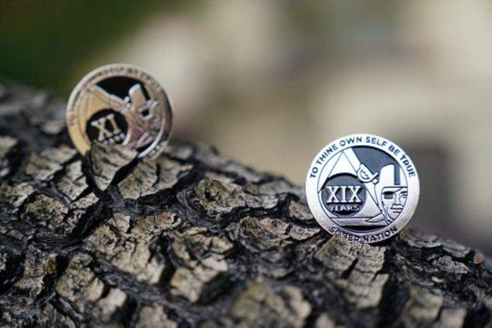 MyRecoveryStore 33 Year Silver and Black Pirate Alcoholics Anonymous AA Chip w//Coin Capsule AA Yearly Medallion 1-50 Years